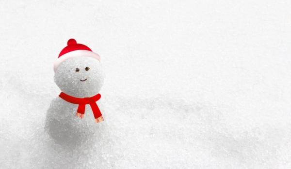 冬休み 作文 中学生